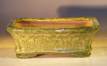 Woodlawn Green Ceramic Bonsai Pot - Rectangle7.0 x 5.5 x 2.4 Image