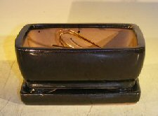 "Ceramic Bonsai Pot With Attached Humidity/Drip tray- Oval 6.37"" x 4.75"" x 2.625"""