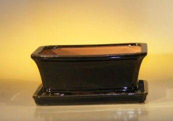 "Ceramic Bonsai Pot With Attached Humidity/Drip tray- Rectangle 8.5"" x 6.5"" x 3.5"""