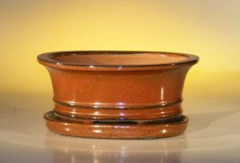 "Ceramic Bonsai Pot With Attached Humidity/Drip tray- Oval 8.5"" x 6.5"" x 3.5"""