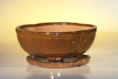 "Ceramic Bonsai Pot With Attached Humidity/Drip tray - Oval 8.5"" x 6.5"" x 3.5"""