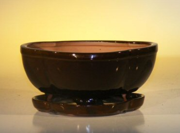 Image: Ceramic Bonsai Pot  With Attached Humidity/Drip tray -Professional Series  Oval 8.5 x 6.5 x 3.5