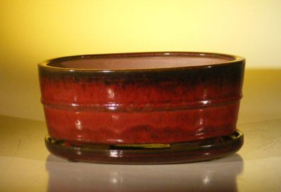 Parisian Red Ceramic Bonsai Pot - Oval <br>Professional Series with Attached Humidity/Drip Tray <br><i>10.75 x 8.5 x 4.125</i>