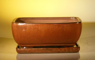 "Ceramic Bonsai Pot With Attached Humidity/Drip tray - Rectangle 10.75"" x 8.5"" x 4.125"""