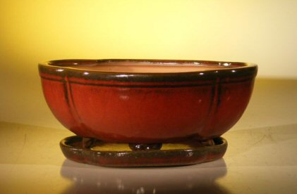 Parisian Red Ceramic Bonsai Pot - Oval / Lotus Shaped Professional Series With Attached Humidity/Drip tray 10.75 x 8.5 x 4.125 Image