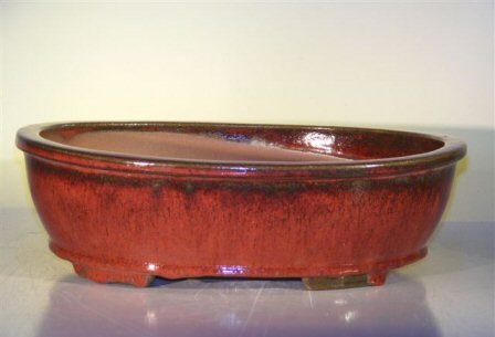 "Ceramic Bonsai Pot - Oval 14.0""x11.0""x4.0"""