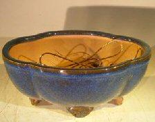 Blue Ceramic Bonsai Pot Oval Lotus Shaped Professional Series 8.25 x 7.0 x 4.0 Image