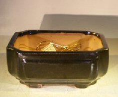 Black Ceramic Bonsai Pot – Rectangle Professional Series 8.25 x 6.25 x 4.0