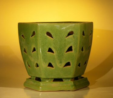 Ceramic Orchid Pot with AttachedTray  8.25
