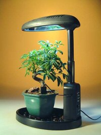 Desktop Grow Light Seed Starting, Seedling, Seedstarting Supplies, Gardening, Seed-Starting, Garden