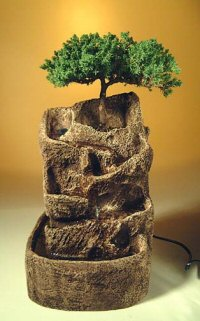 Bonsai Waterfall Garden Single Brown