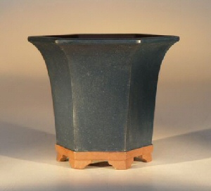 "Ceramic Bonsai Pot - Hexagon Blue 3.75""x3.75"""