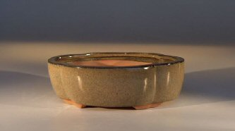 "Ceramic Bonsai Pot - Irregular Oval 7.5"" x 5.5"" x 2.5"""