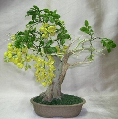 Artificial Flowering Golden Shower Bonsai Tree