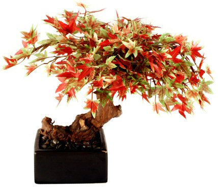 Artificial Japanese Maple Bonsai Tree - Small