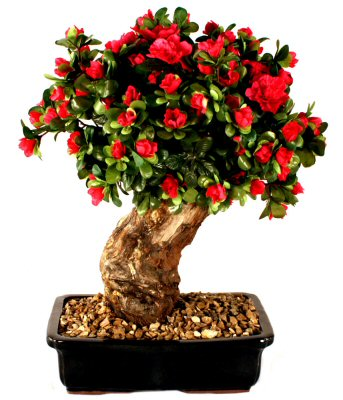 Artificial Azalea Bonsai Tree - Large