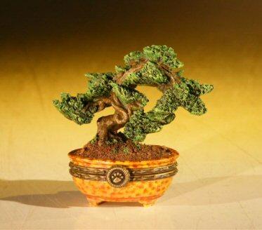 Miniature Bonsai Tree Treasure Box Bonsai Trees Tools