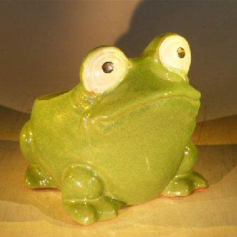 Image: Frog Planter