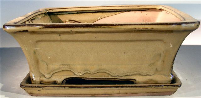 Image: Ceramic Bonsai Pot  With Attached Humidity/Drip tray - Rectangle 10.75 x 8.5 x 4.125