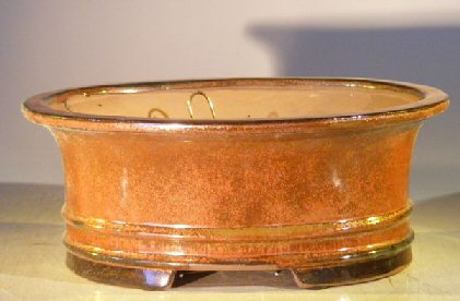 Image: Ceramic Bonsai Pot - Professional Series Oval 10.0 x 8.0 x 4.0