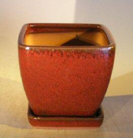 Parisian Red Ceramic Bonsai Pot<br>Square With Attached Tray <br><i>5