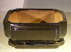 Black Ceramic Bonsai Pot- Rectangle <br>Professional Series With Attached Humidity/Drip Tray <br>8.5