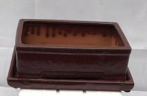 Parisian Red Ceramic Bonsai Pot -Rectangle<br>With Humidity Drip Tray<br>10.5