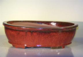 Parisian Red Ceramic Bonsai Pot - Oval<br><i>14.0