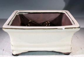 Beige Ceramic Bonsai Pot - Rectangle <br>Professional Series <br><i>6