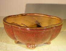 Parisian Red Ceramic Bonsai Pot  - Oval Lotus Shaped <br>Professional Series<br> 8.25