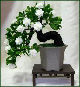 Charmant Artificial Gardenia Bonsai Treeu003cbru003e