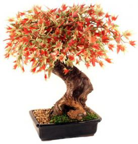 Artificial Japanese Maple Bonsai Tree Large