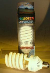 Grow Bulb Compact Fluorescent<br>32 Watt / 150 Watt Equivalent