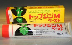 Bonsai Wound / Cut Paste Dressing - 190 Gram Tube<br><i></i>Seals Bonsai Tree Wounds