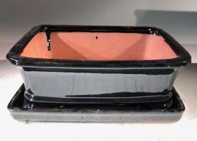 Black Ceramic Bonsai Pot - Rectangle<br>With Humidity Drip Tray<br>8