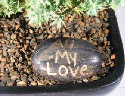 Personalized Skipping Stone - <br><i></i>